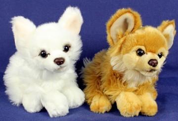 Plüsch Chihuahua